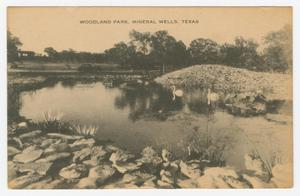 Primary view of object titled '[Postcard of Woodland Park]'.