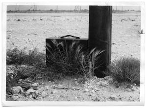 Primary view of object titled '[Photograph of a Suitcase Behind Squirreltail Grass]'.