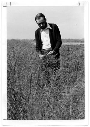 Primary view of object titled '[Photograph of a Man Standing in Weeping Lovegrass]'.