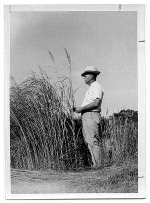 Primary view of object titled '[Photograph of a Man in Tall Cordgrass]'.