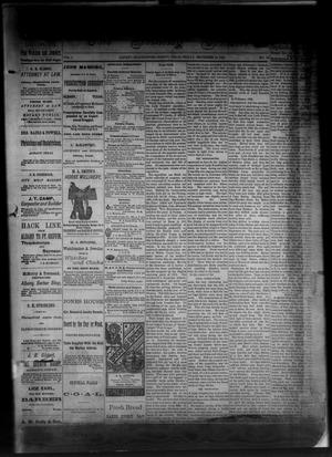 Primary view of object titled 'The Albany News. (Albany, Tex.), Vol. 1, No. 30, Ed. 1 Friday, September 19, 1884'.