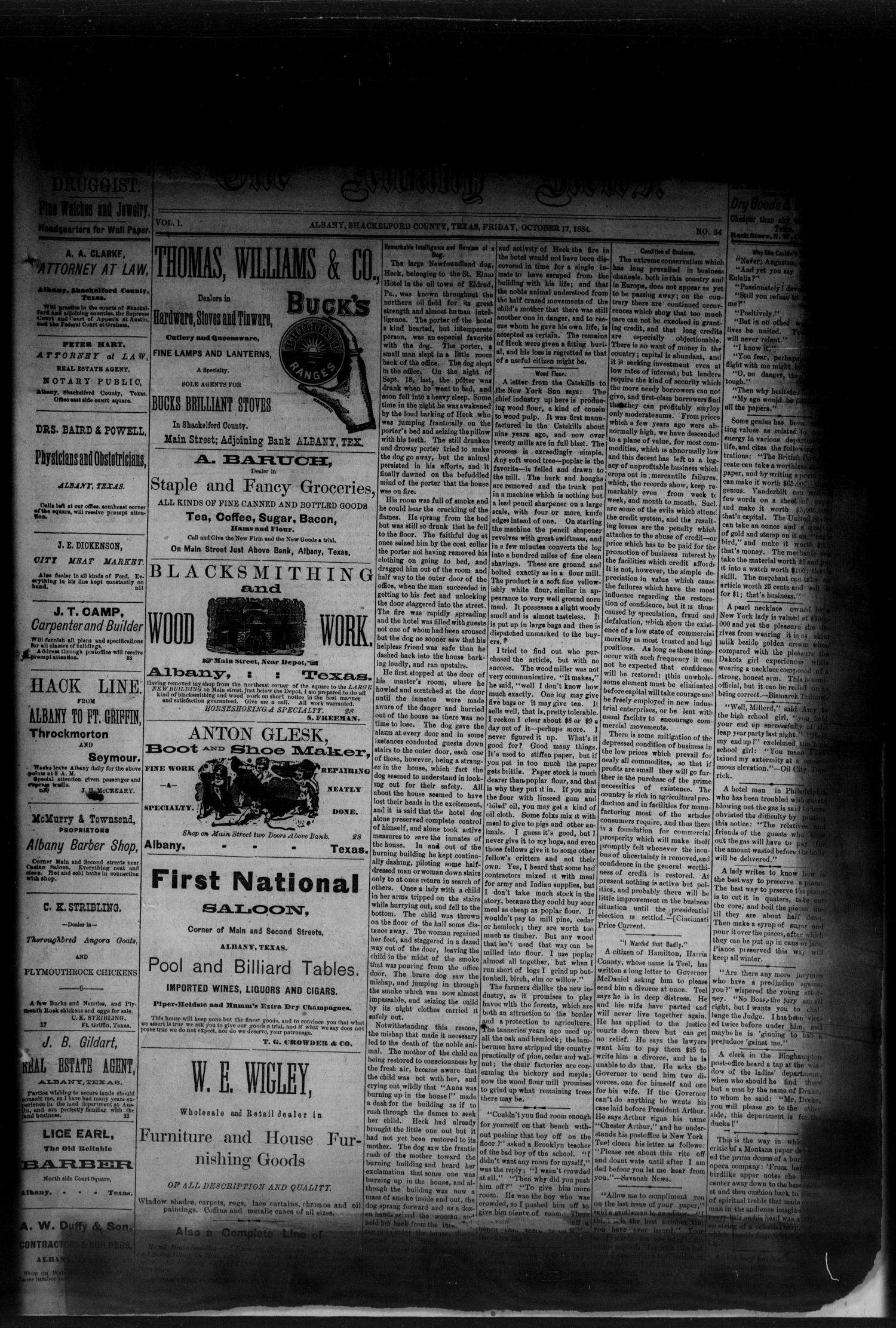 The Albany News. (Albany, Tex.), Vol. 1, No. 34, Ed. 1 Friday, October 17, 1884                                                                                                      [Sequence #]: 1 of 6