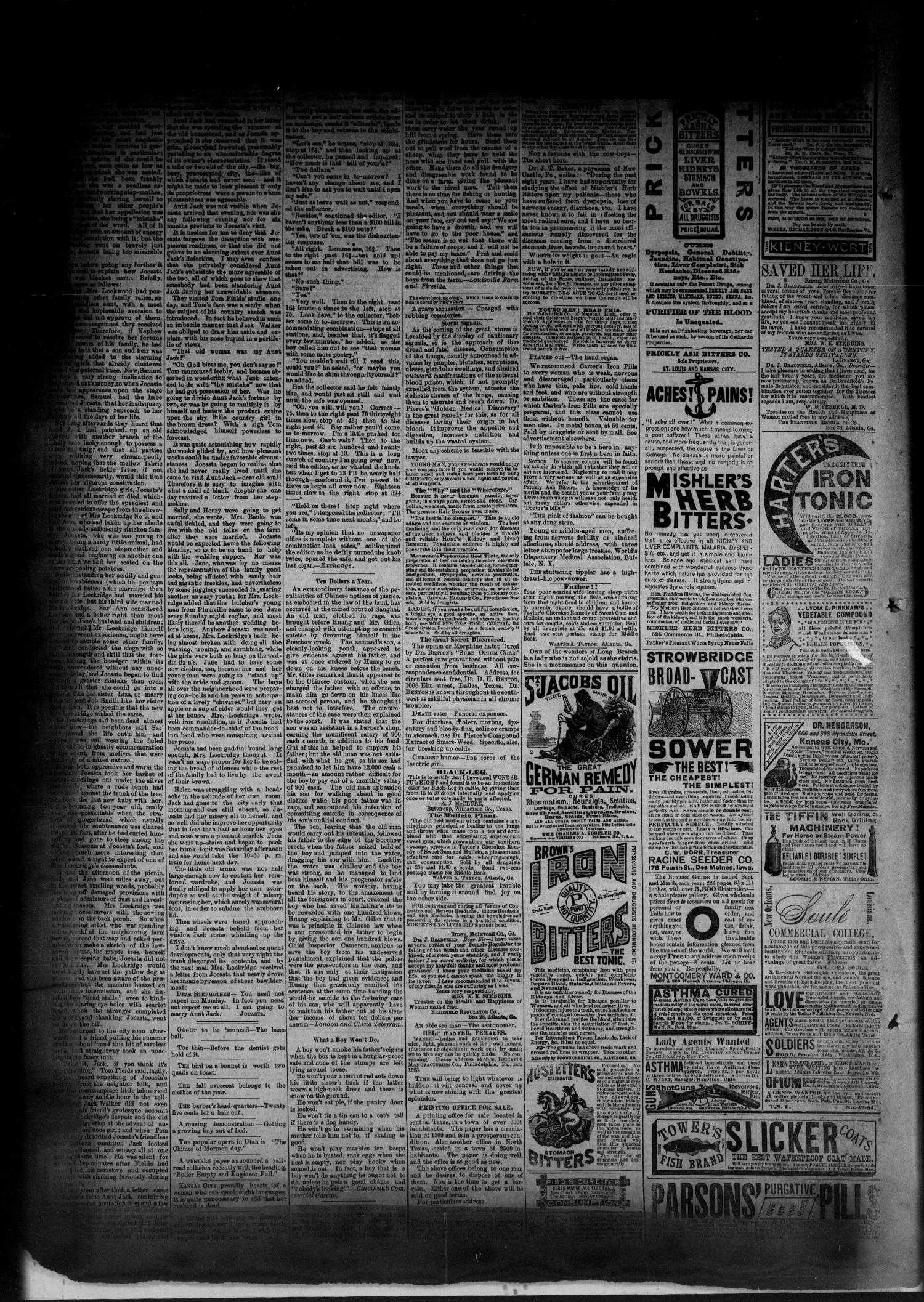 The Albany News. (Albany, Tex.), Vol. 1, No. 34, Ed. 1 Friday, October 17, 1884                                                                                                      [Sequence #]: 4 of 6