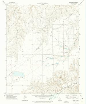 Primary view of Pampa Northeast Quadrangle