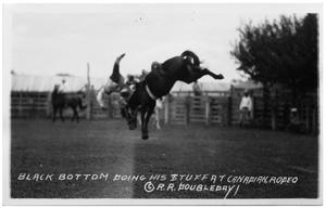 Primary view of object titled 'Cowboy Bucked Off a Horse'.