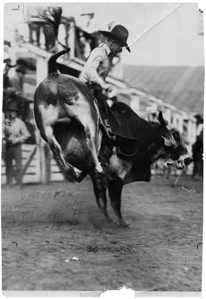 Hughie Long on a Bull