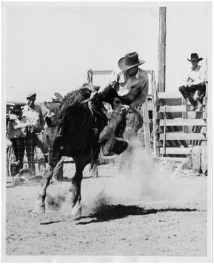 Primary view of object titled 'Cowboy Being Bucked Off a Horse'.