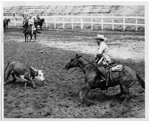 Primary view of object titled 'Steer Facing Off a Rider'.