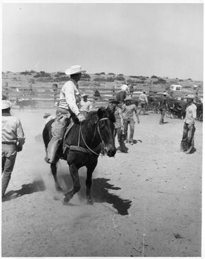 Primary view of object titled 'Cowboy on a Horse'.