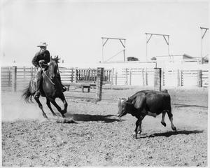 Primary view of object titled 'Cowboy Riding Towards a Cow'.