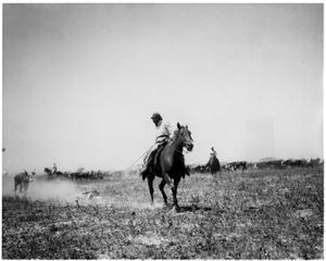 Primary view of object titled 'Horse and Rider Dragging a Cow'.