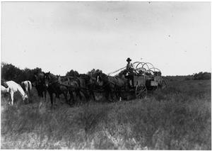 Primary view of object titled 'Horse-Drawn Wagon Commuting in a Field'.