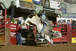[Bull Riding at Cowtown Coliseum]