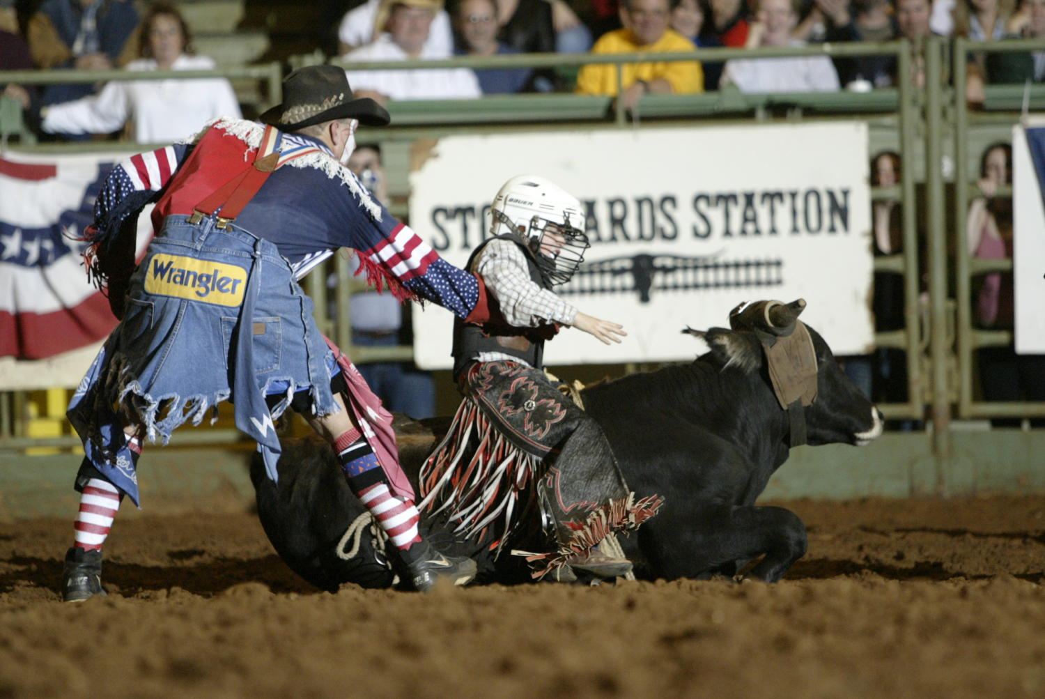 Junior Bull Riding At Cowtown Coliseum The Portal To