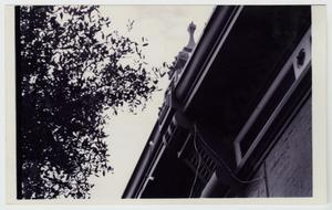Primary view of object titled '[Kleinert Building Photograph #5]'.