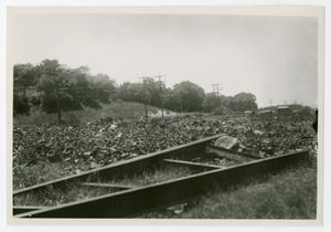 Primary view of object titled '[Photograph of North Dallas Incinerator Yard]'.