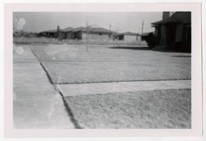 Primary view of object titled '[Photograph of Lawns on Marquette Street]'.