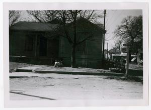 Primary view of object titled '[Photograph of a Dallas Neighborhood]'.