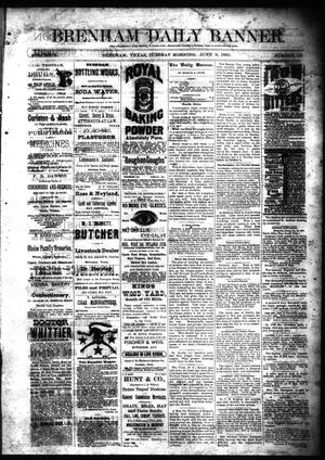 Primary view of object titled 'Brenham Daily Banner. (Brenham, Tex.), Vol. 10, No. 137, Ed. 1 Tuesday, June 9, 1885'.