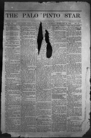 Primary view of object titled 'The Palo Pinto Star (Palo Pinto, Tex.), Vol. 6, No. 37, Ed. 1, Saturday, February 28, 1885'.