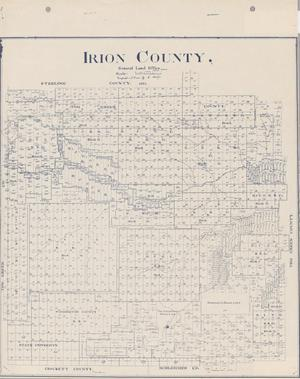 Primary view of object titled 'Irion County'.