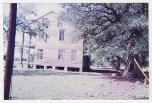 Primary view of object titled '[Braches House Photograph #3]'.