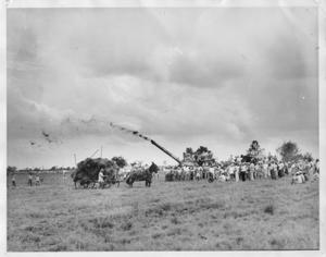 Primary view of object titled '[Rice threshing scene. Crowd of people (right of photo) gathered around.]'.
