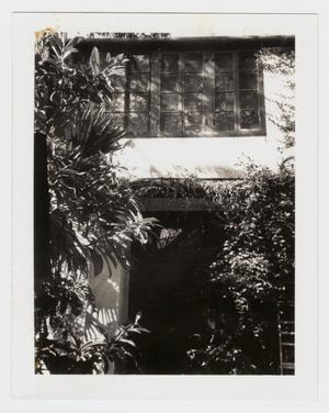 Primary view of object titled '[L. B. Clegg House Photograph #4]'.