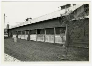 Primary view of object titled '[Gruene's Hall Photograph #4]'.