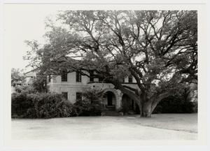 Primary view of object titled '[A. C. Schreiner, Jr. Home Photograph #1]'.
