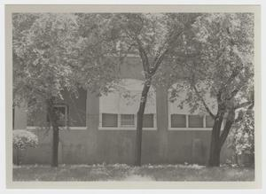Primary view of object titled '[Badu House Photograph #3]'.