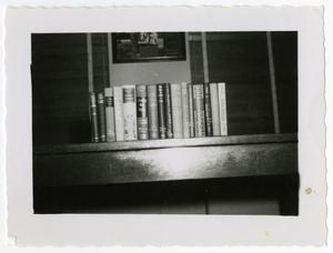 Primary view of object titled 'A Row of Books'.
