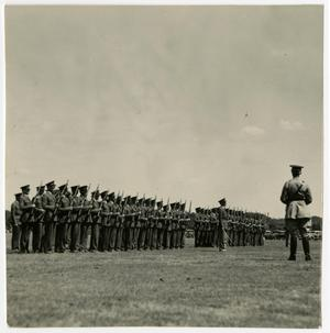 Primary view of object titled 'Men Standing in Attention with Rifles in a Field'.
