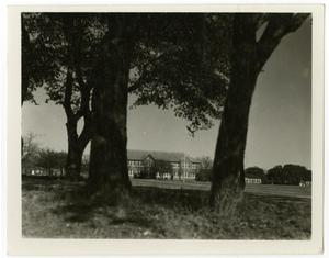 Primary view of object titled 'View of A.C. Schreiner and Dickey Hall'.