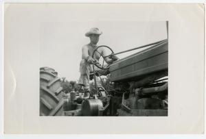 Primary view of object titled 'Agricultural and Animal Husbandry Students and Friends, Shirtless Man Riding a Tractor, 1950s'.