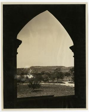 Primary view of object titled 'View From the Admin. Building (Weir) of Trees'.