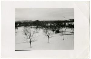 Primary view of object titled 'Trees and President's House in Snow'.