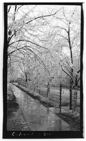 Primary view of object titled 'Icy Sidewalk in Colorado City'.