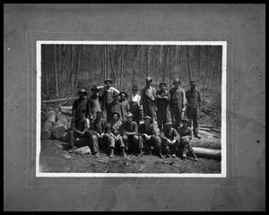 Primary view of object titled 'Seventeen Woodcutters Posing on Felled Trees'.