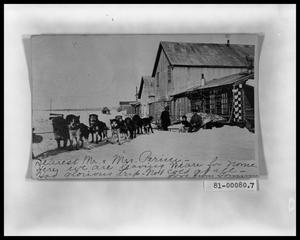 Primary view of object titled 'Postcard from Alaska; Sled Dog Team'.