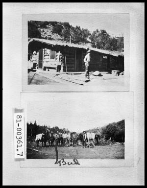 Man Outside Cabin; Survey Team with Horses