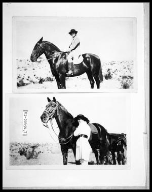 1920s Woman on Horse; Woman and Horse