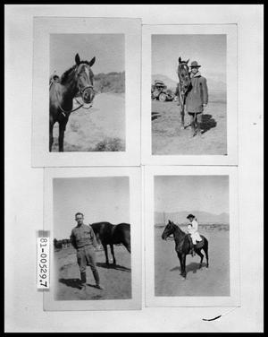 Horse; Man with Horse; Man with Horse; Man on Horse