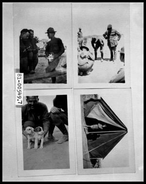 Primary view of object titled 'Three Men Examing Book; Men in Uniform; Men in Uniform with Two Puppies; Woman in Doorway of Tent'.