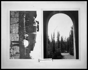 Primary view of object titled 'Picture of Men in Vineyard; Archway and Trees'.
