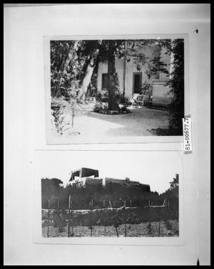 Primary view of object titled 'Exterior of House and Trees; Pueblo, NM'.