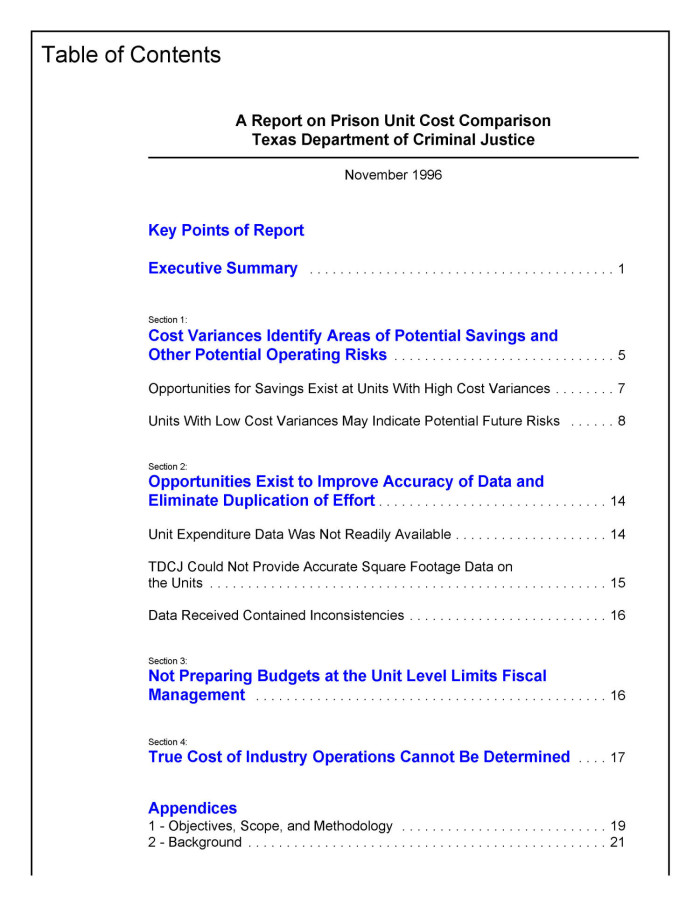 primary view of object titled a report on prison unit cost comparison texas department of