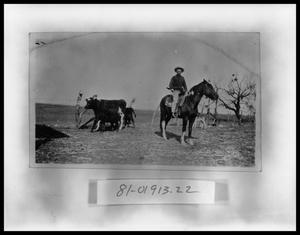 Primary view of object titled 'Boy On Horse #1'.