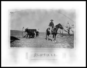 Primary view of object titled 'Boy On Horse #2'.