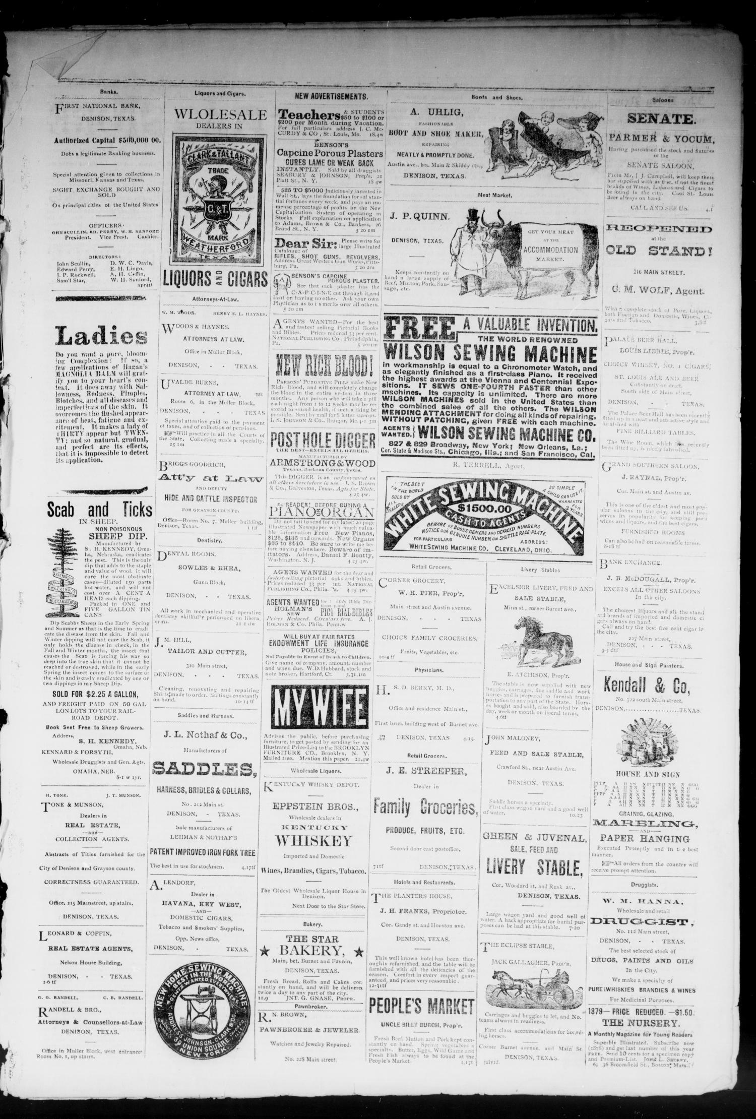 Denison Daily News. (Denison, Tex.), Vol. 7, No. 96, Ed. 1 Tuesday, June 24, 1879                                                                                                      [Sequence #]: 3 of 4